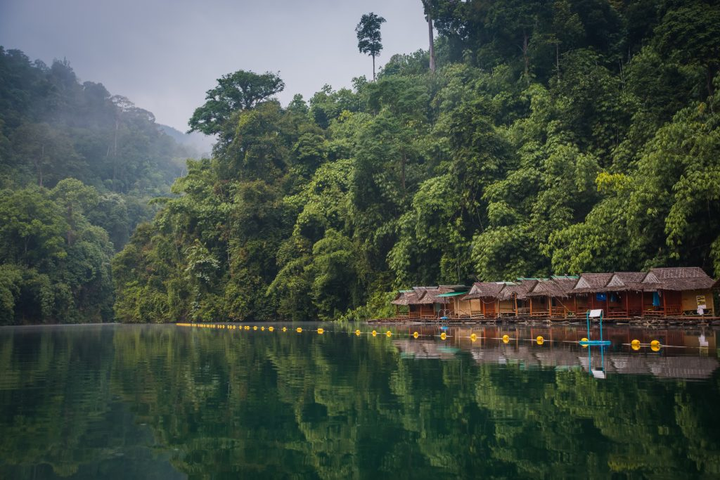 Khao sok National park in the South of Thailand