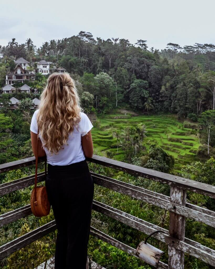 coffee plantation and Bali Pulina in the north of Bali