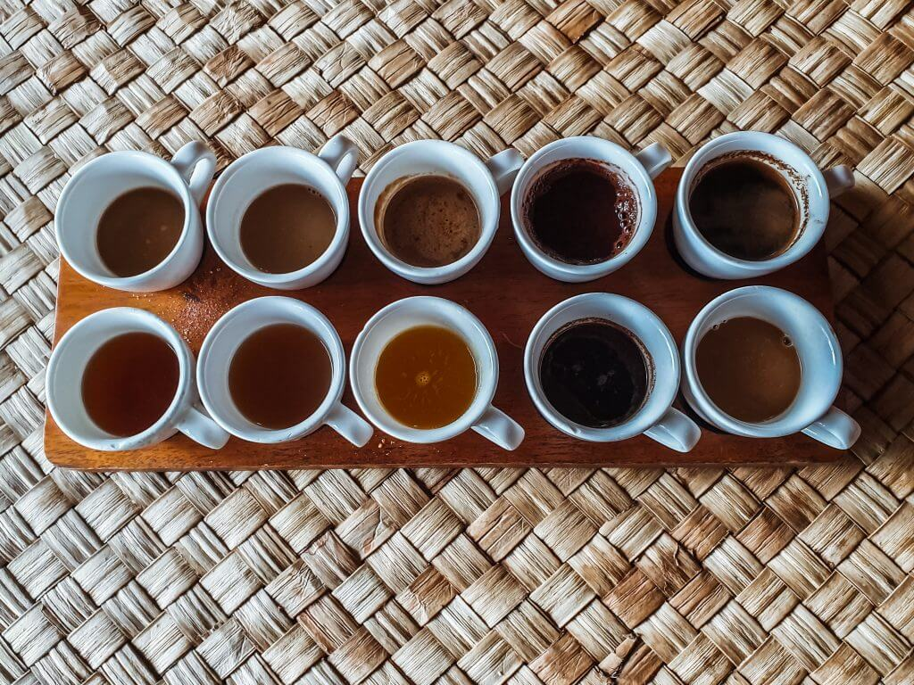 12 cup tasting set of coffee and tea at Bali Pulina coffee plantation in the north of Bali