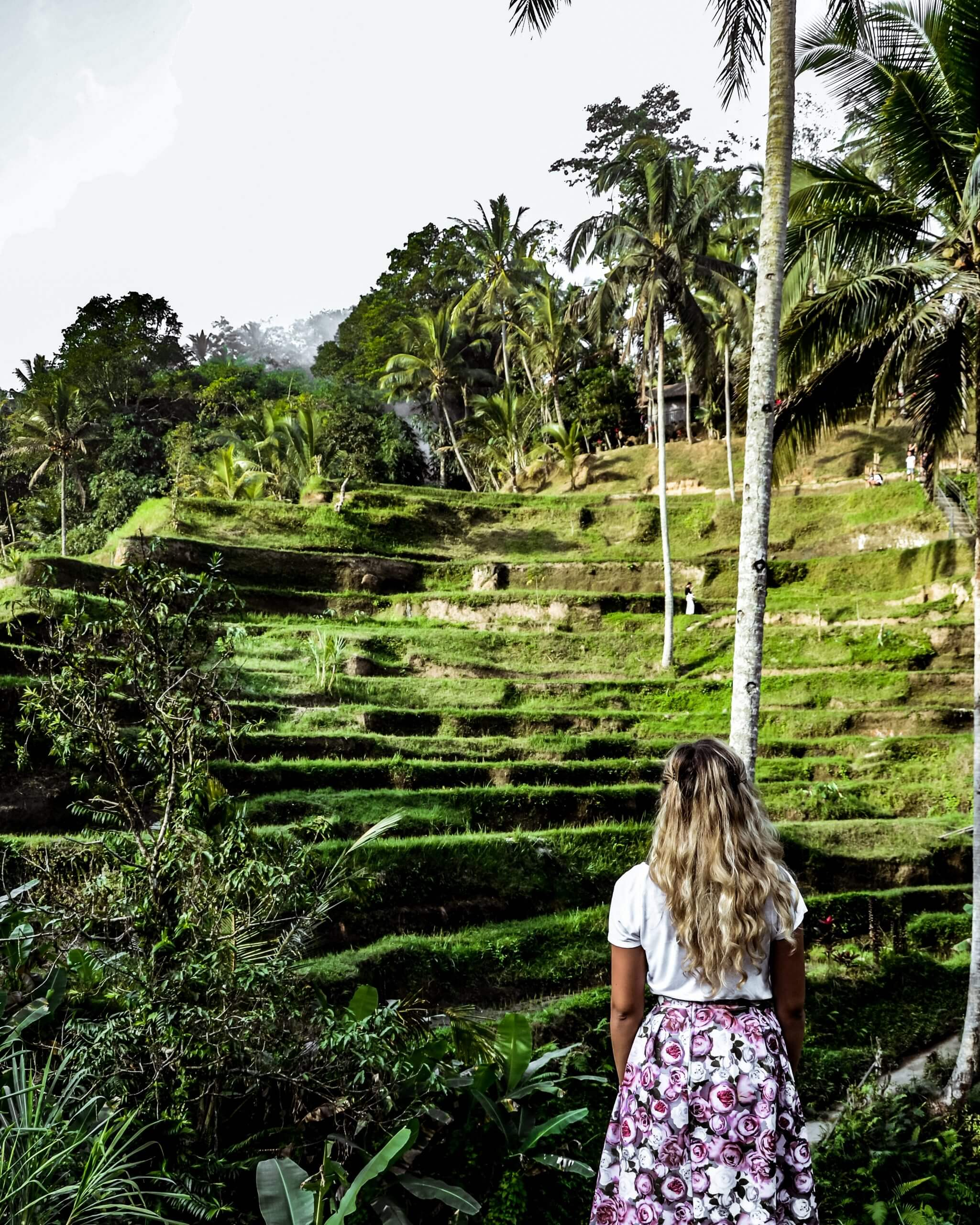 Chane enjoying the view of theTegallalang Rice Terrace in Bali