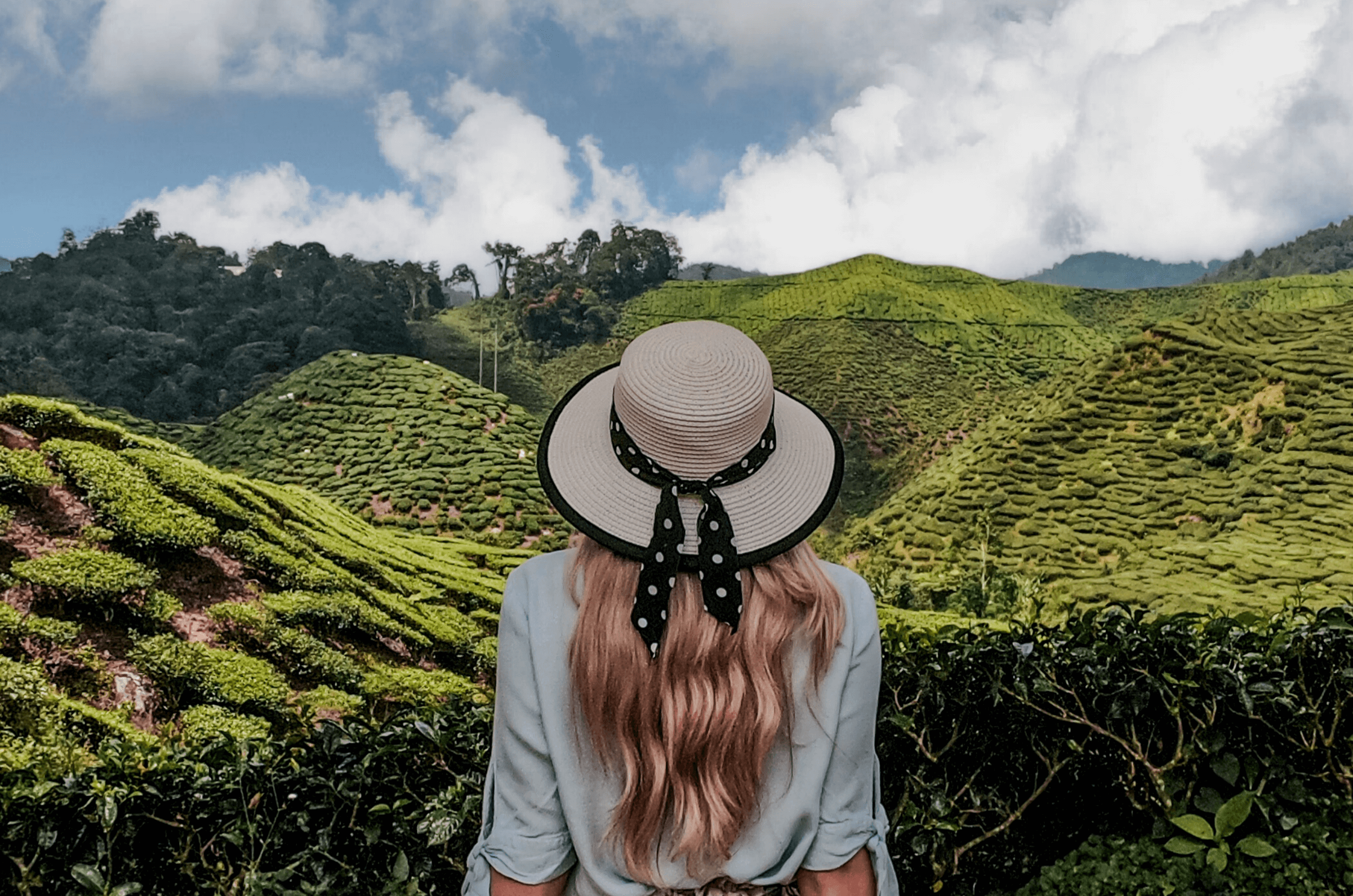 feauture image for the 8 things to do that will make you fall in love with Malaysia blog